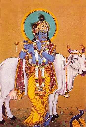 Krishna with the divine white cow