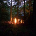 sacred circle and fire in a grove