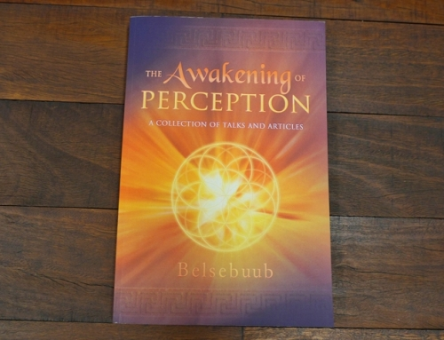 The Awakening of Perception now available in paperback
